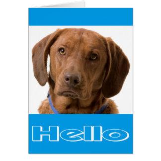 Bonjour carte de note de chiot de labrador carte de correspondance