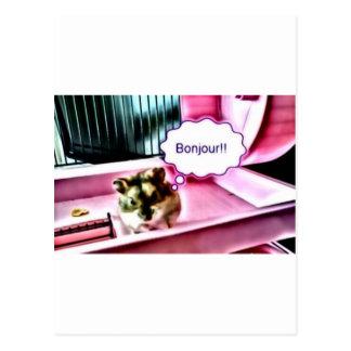 Bonjour Hamster Postcard