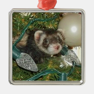Bonnie in the Tree Christmas Ornament