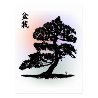 Bonsai 02 postcard
