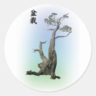 Bonsai 04 round sticker