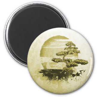 Bonsai and Sun Magnet