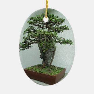 bonsai ceramic ornament
