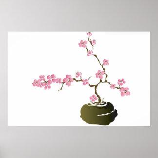Bonsai cherry tree Poster