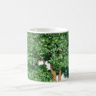Bonsai mug