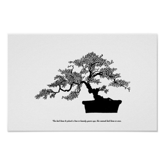Bonsai Poster with text