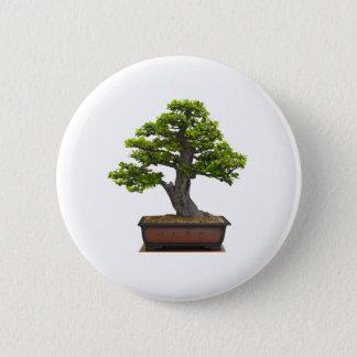 bonsai tree 2 inch round button