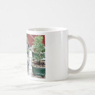 Bonsai Tree Coffee Mug