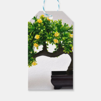 Bonsai tree pack of gift tags