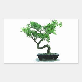 bonsai-tree Painting