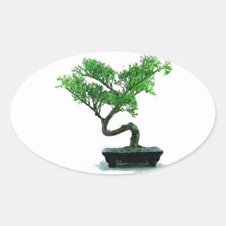 bonsai-tree Painting Oval Sticker