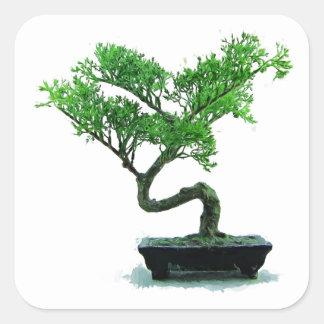 bonsai-tree Painting Square Sticker