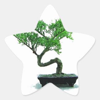 bonsai-tree Painting Star Sticker