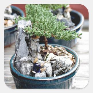 Bonsai Tree Square Sticker