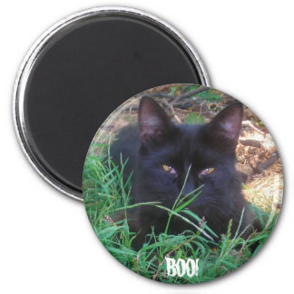 BOO! BLACK KITTY MAGNET