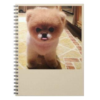 boo notebooks