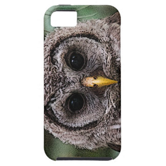 Boo - Owlwatch 2014 Owlet Case For The iPhone 5