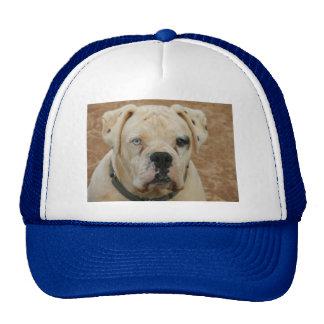 BOOBOO TRUCKER HAT