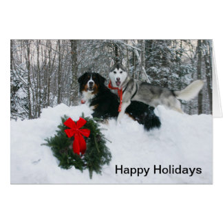 Boof and Molly in a Snowbank Happy Holidays Card