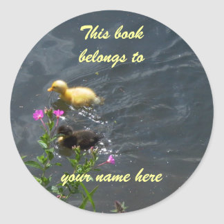 bookplate little ducklings classic round sticker