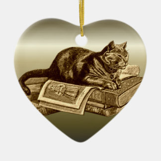 Bookworm Kitty Cat Reading Books Ceramic Ornament
