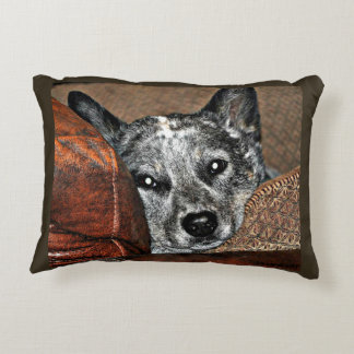 Boomer and Jessie Collection Pillow