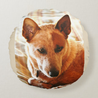 Boomer Red Heeler Round Poly Pillow