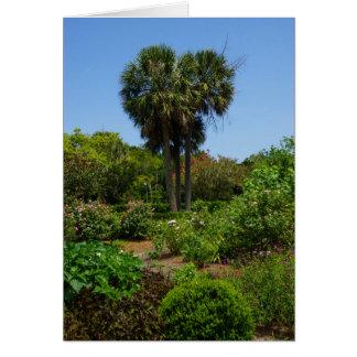 Boone Hall Garden Note Card