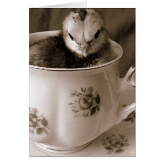 Boots In A Tea Cup,Mother's Day Card