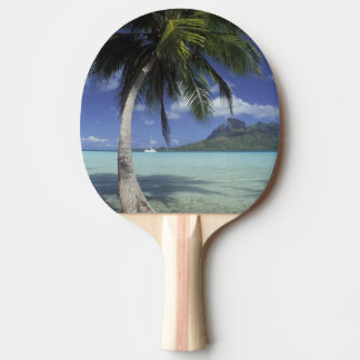 Bora Bora, French Polynesia Mt. Otemanu seen Ping Pong Paddle