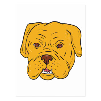 Bordeaux Dog Head Cartoon Postcard