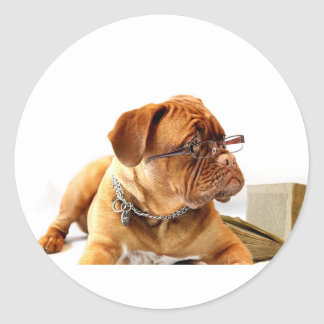 Bordeaux Mastiff, French Mastiff Bordeauxdog Gift Classic Round Sticker