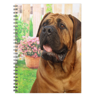 Bordeaux Mastiff Spiral Notebook