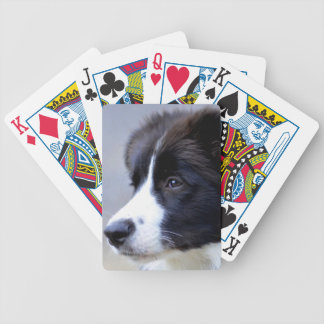 border bicycle playing cards