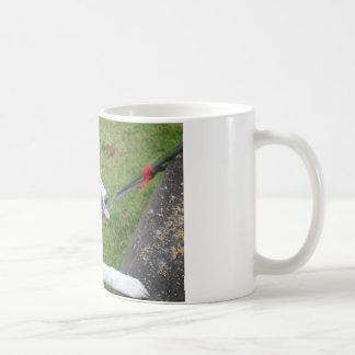 border colie coffee mug