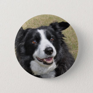 Border Collie 2 Inch Round Button