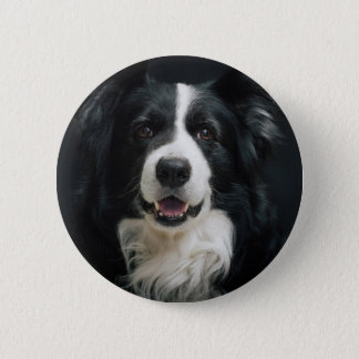 border-collie 2 inch round button