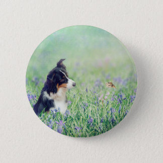 Border Collie and Hummingbird 2 Inch Round Button