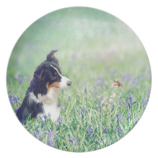 Border Collie and Hummingbird Plate