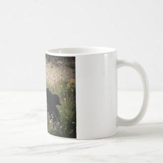 Border Collie Australian Shepherd Mix Coffee Mug