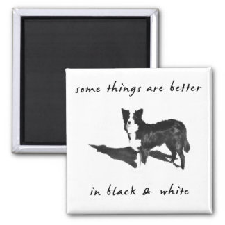 Border Collie Better Magnet