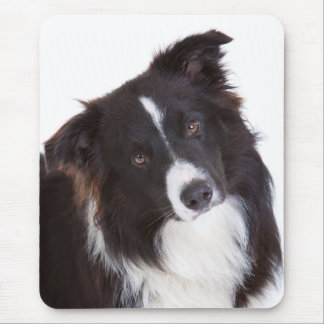 Border Collie Black And White Puppy Dog Mouse Pad