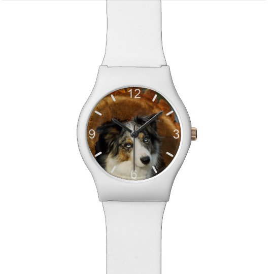 Border Collie Blue Merle Dog - girly dial-plate Wrist Watches