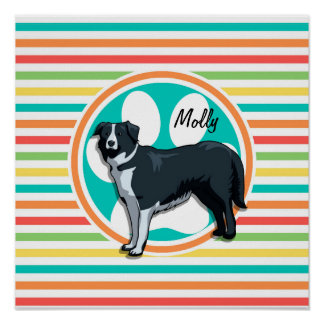 Border Collie Bright Rainbow Stripes Posters