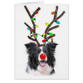 Border Collie Christmas Card~Rudolph Card