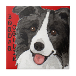 Border Collie Color Block Tile