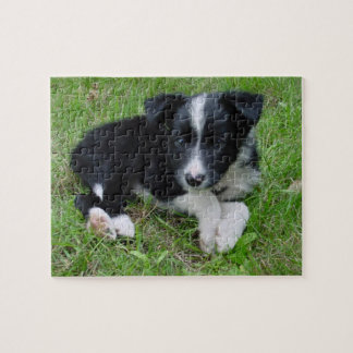Border Collie Customizable Puzzle! Jigsaw Puzzle