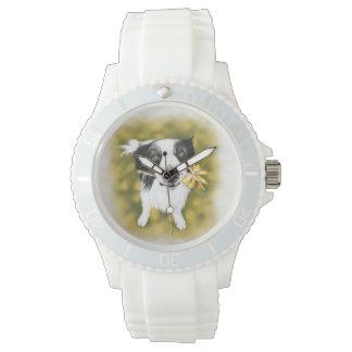 Border collie cutie watch