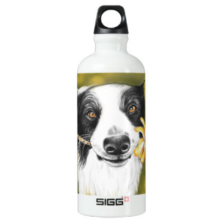 Border collie cutie water bottle