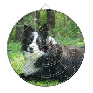 Border Collie Dartboard With Darts